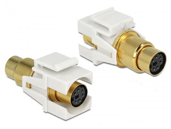 Keystone Mini-DIN 6 Pin (PS/2) Buchse > Buchse vergoldet
