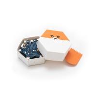 Foldio Starterset für Calliope mini - Programmieren lernen für Kinder